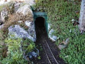 Tunnel Cuijk